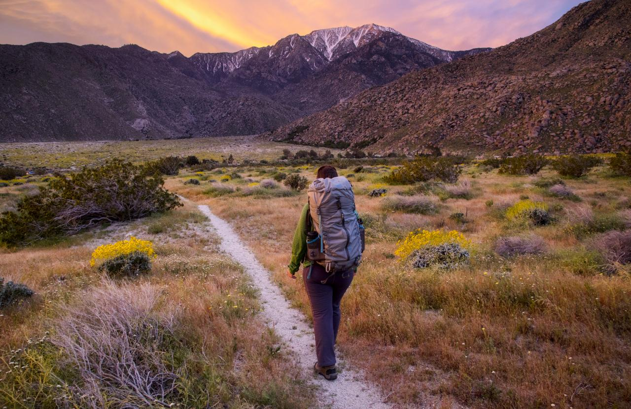 Person walking through the Pacific Crest National Trail in California
