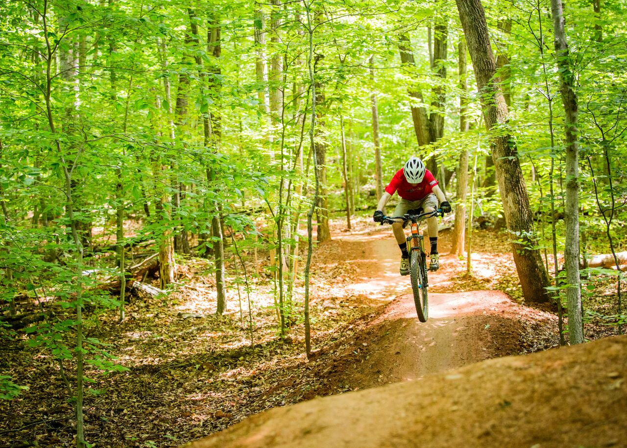 Mountain bicyclist riding on a trail in a green forest.