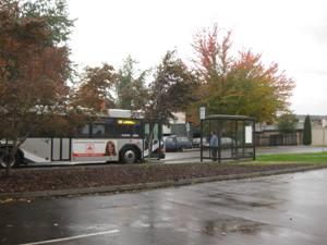 C-TRAN bus service near Steigerwald Lake National Wildlife Refuge