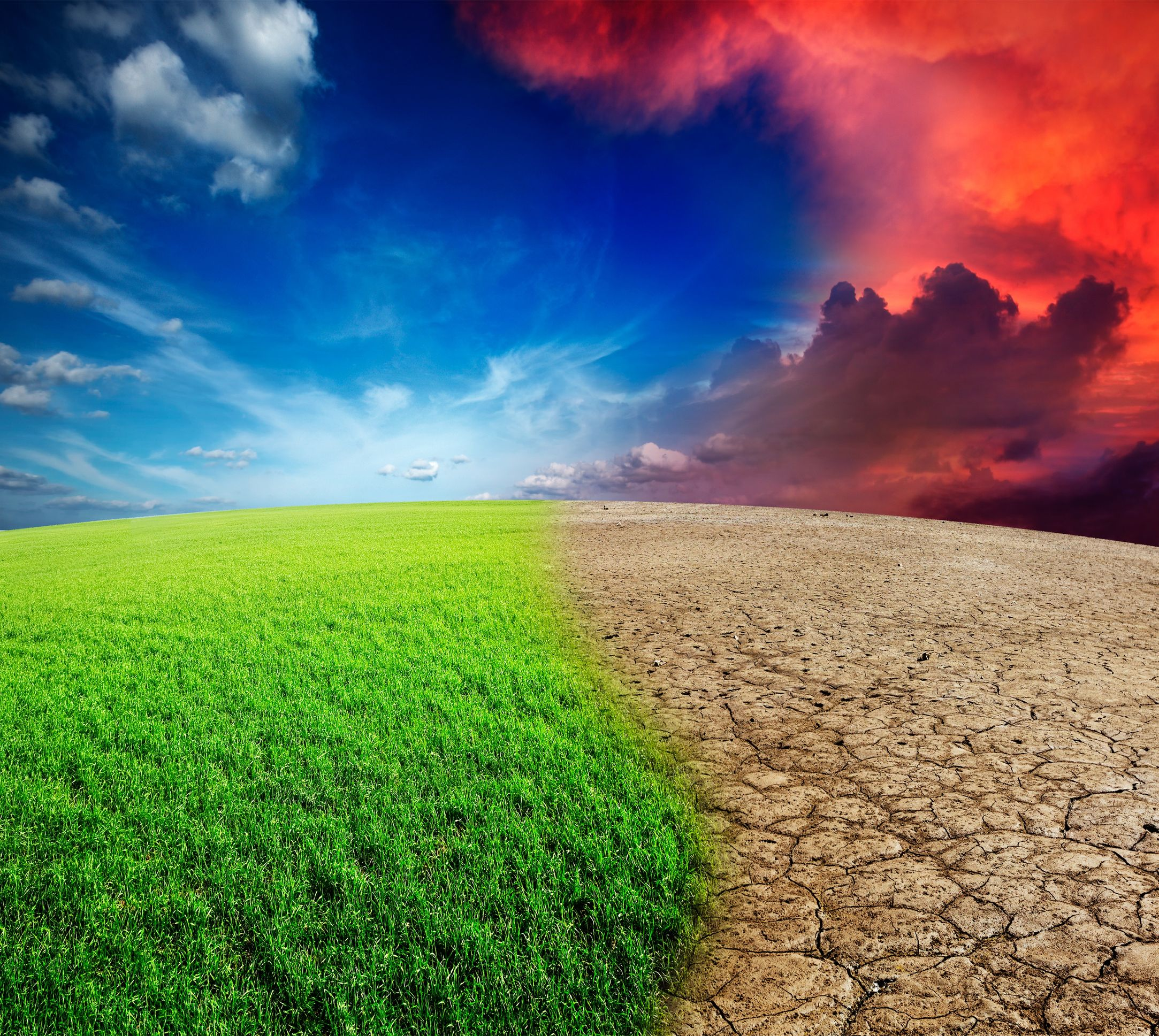 Climate change: a desert starts invading a lush green landscape.