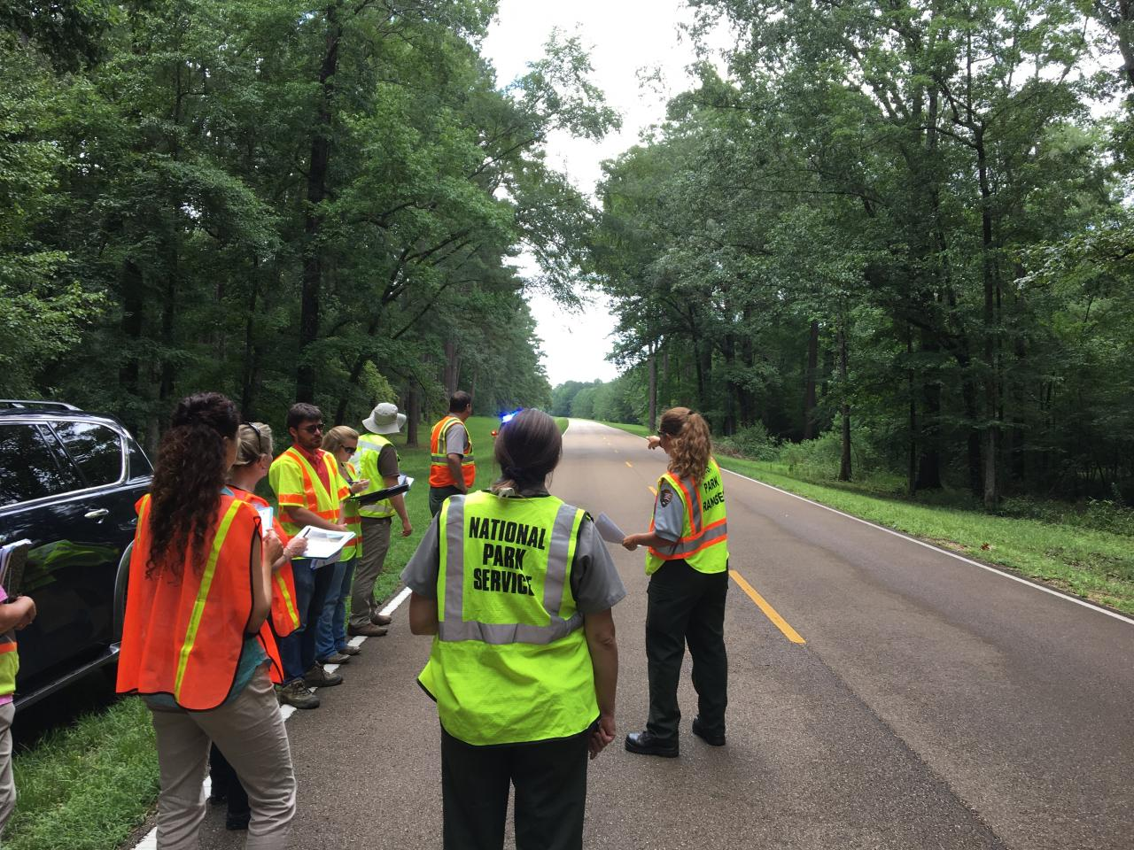 Eight people wearing orange and yellow safety vests stand with clipboards along a road in a national park.